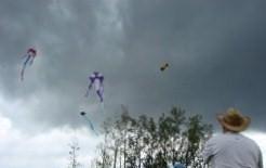 Los Papalotes Banderas vuelan libres en el cielo gris o azul, con hilos tan sensibles...Josán Caballero.