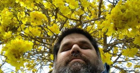 Josán Caballero en Primavera.