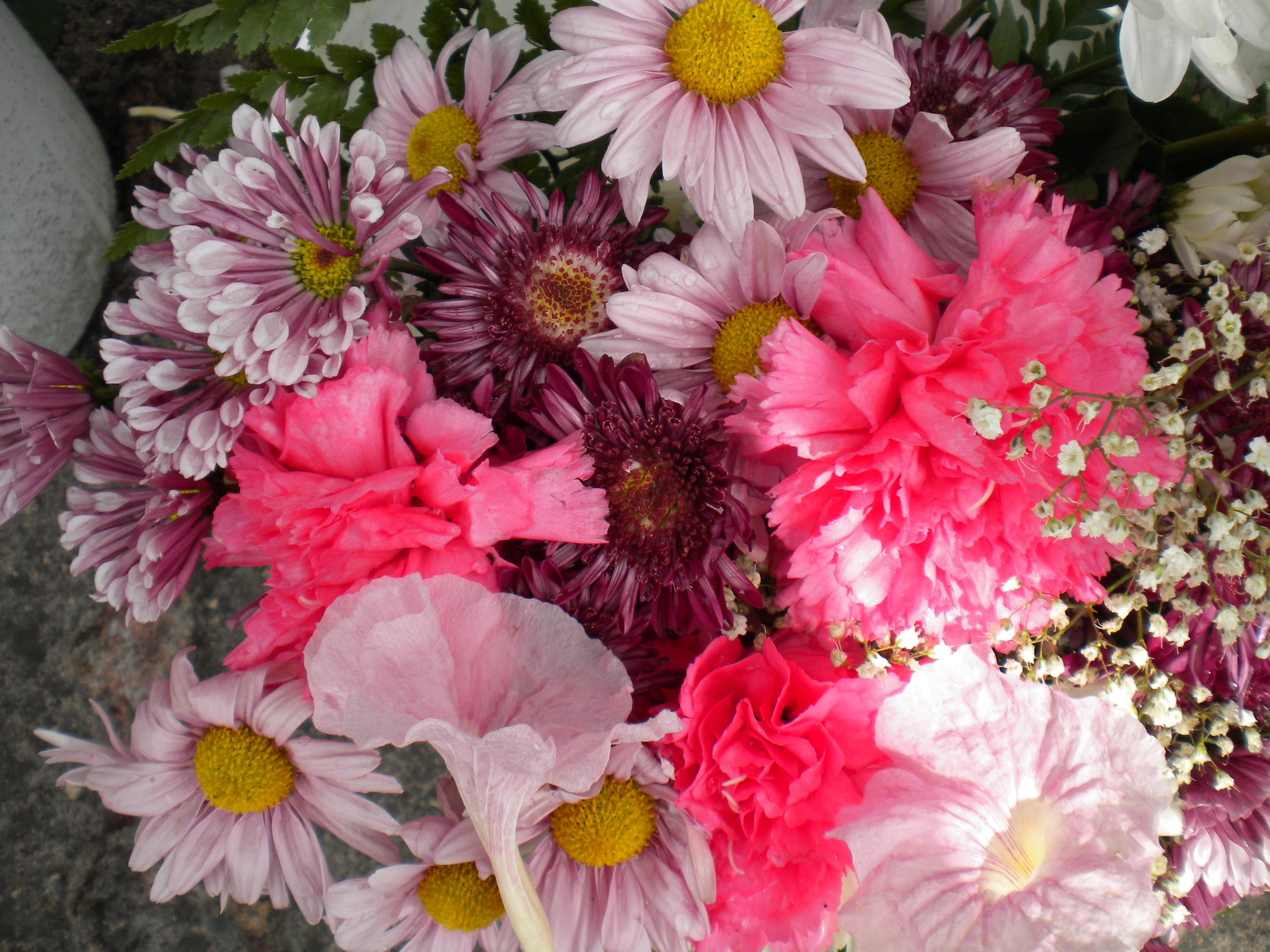 Escojan las flores que deseen, que ustedes son nuestras Madres del Cambio.