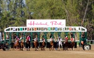 Hialeah Park Quarter Horse racing/2.3.10