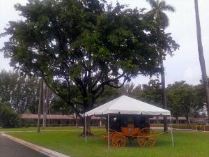 Atracciones del Hialeah Park Hipódromo