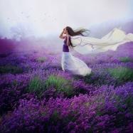 lavender_by_elaisse-d5rhttf