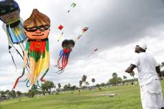 Randy19 Kite New hmg